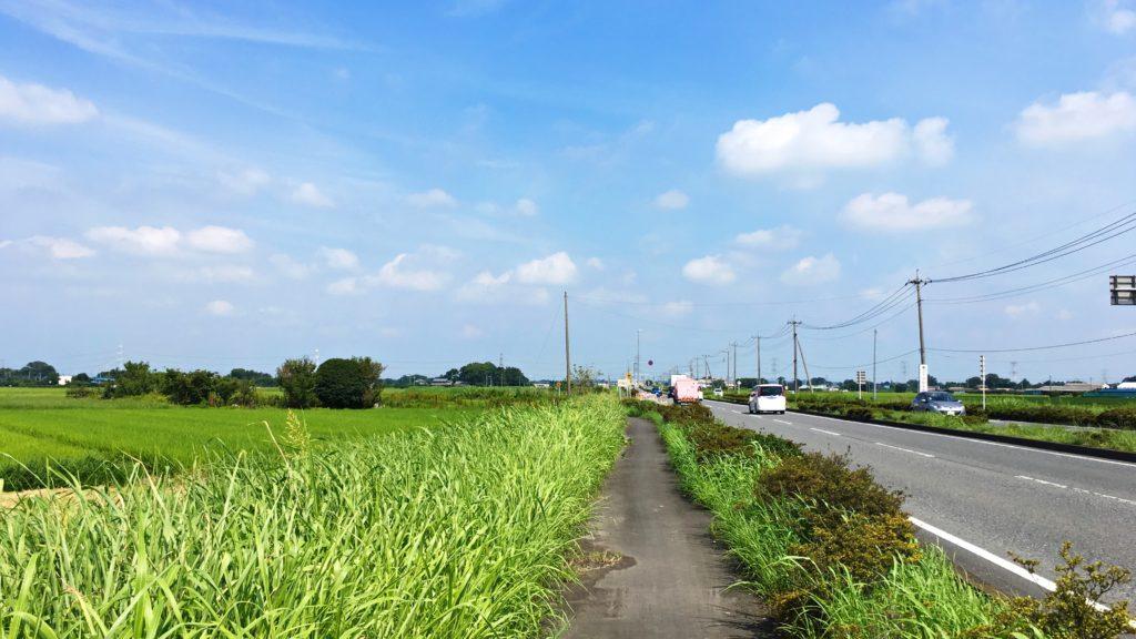田園が広がる幹線道路