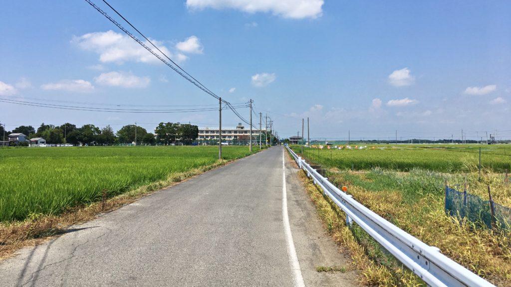 田園風景の通り