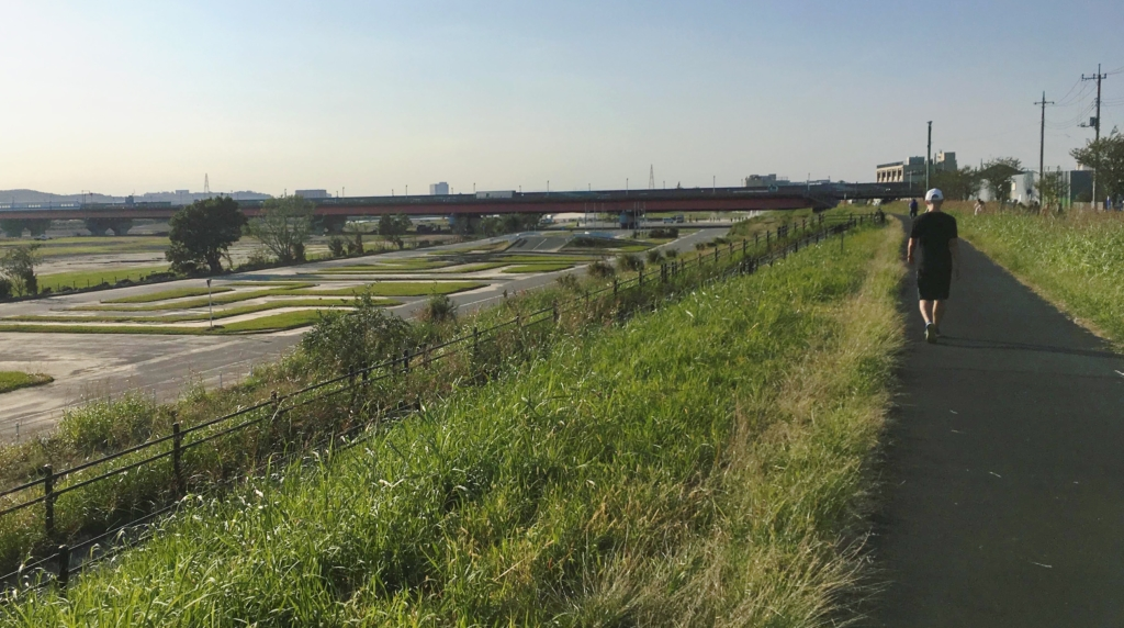 東名高速辺りの多摩川サイクリングロード