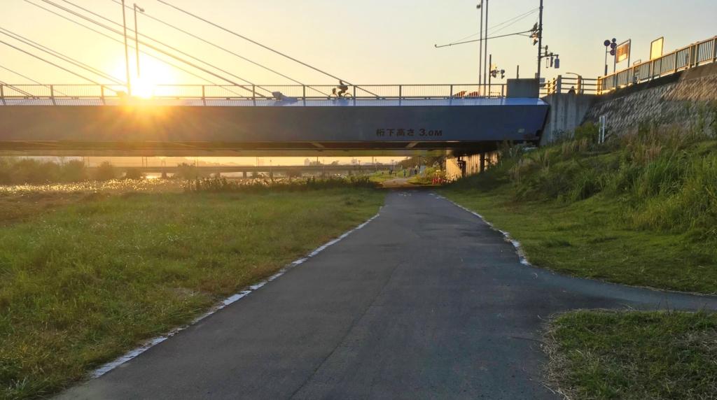 是政橋辺りの多摩川サイクリングロード