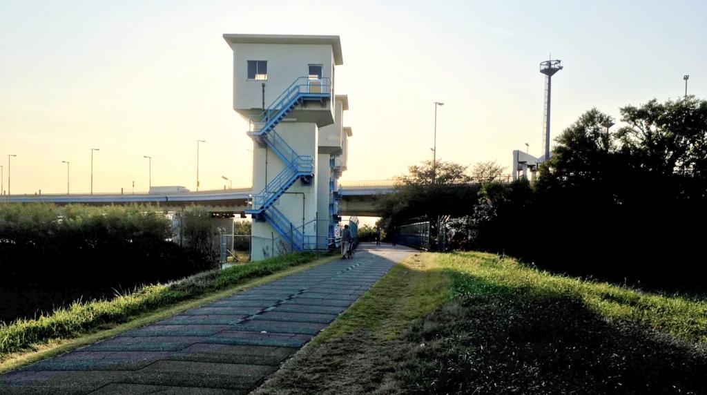 稲城大橋辺りの多摩川サイクリングロード
