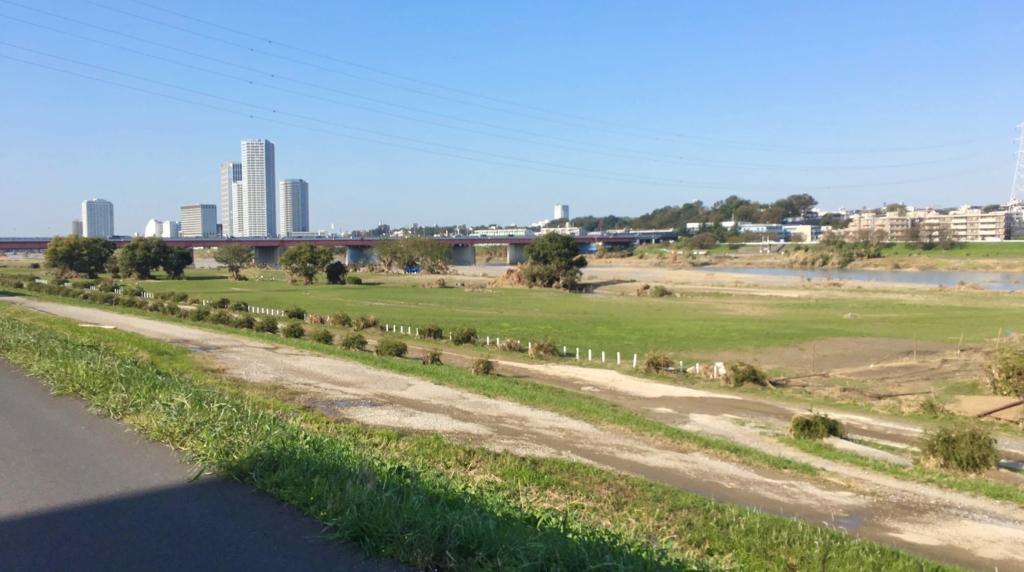 第三京浜辺りの多摩川河川敷