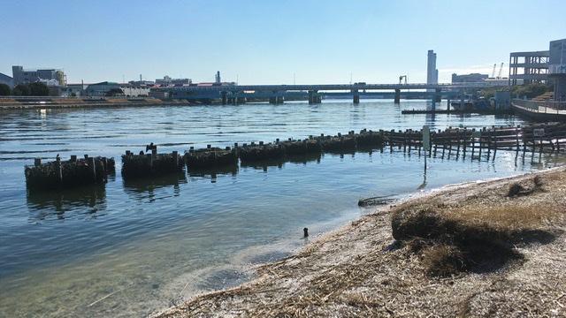 鶴見川右岸河口