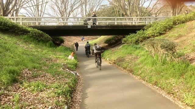 砧公園サイクリングロード
