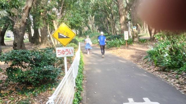 砧公園のランニングコース