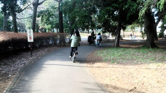 砧公園のサイクリングロード