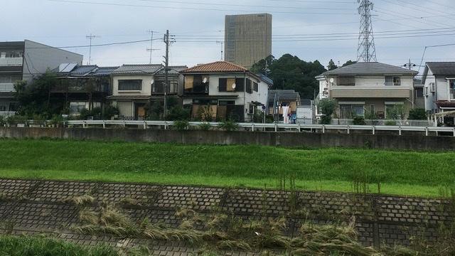 大栗川から望む帝京大学