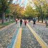 世田谷246ハーフマラソン2020はオンライン開催!新しいマラソン様式は楽しめるのか!