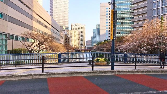 五反田山本橋から下流を望む