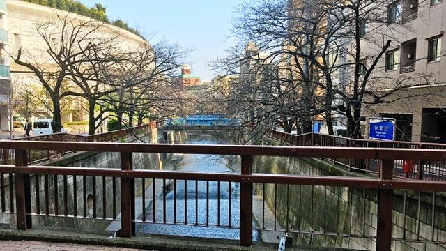 池尻大橋の目黒川
