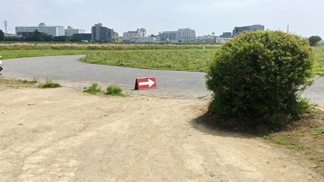 月例川崎マラソン5kmの部でホームストレートに入るところ