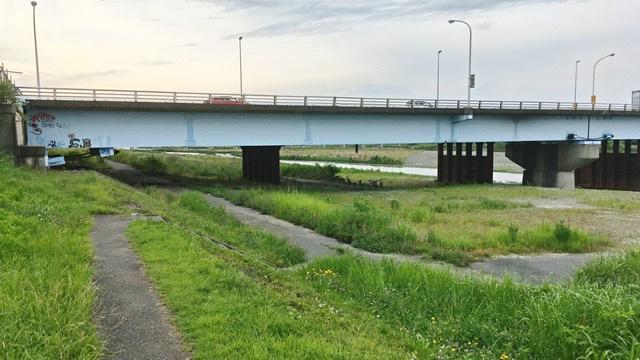 多摩川右岸から見る関戸橋