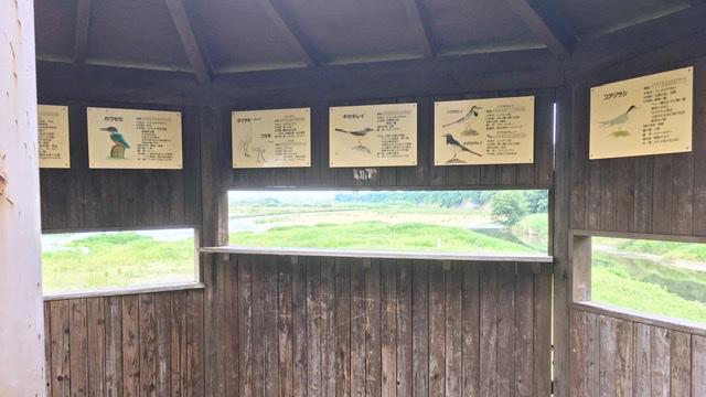 多摩川と大栗川の合流地点にある野鳥観察小屋の中