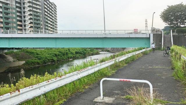 大栗川左岸から見る向ノ岡大橋