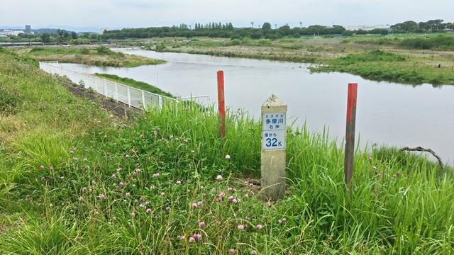 多摩川右岸 海から32km地点