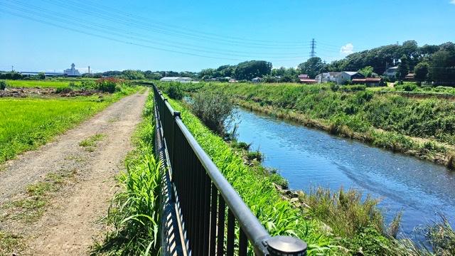 目久尻川と河川敷コース