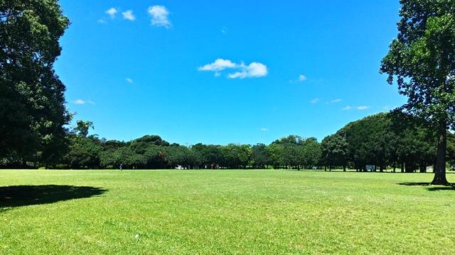 横浜市岸根公園のひょうたん原っぱ