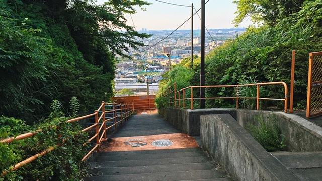 稲城市矢野口の遊歩道「巨人への道」ゴール地点から眺望
