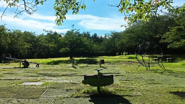 平塚市総合公園の桜の広場