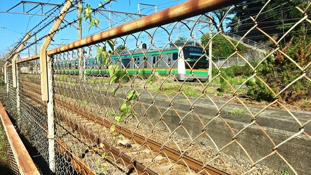 東海道線とホームをフェンス越しに見る