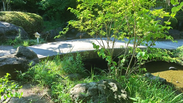 平塚市総合公園の日本庭園の切石橋