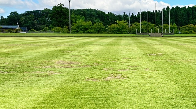 見附運動公園の陸上競技場トラックの天然芝