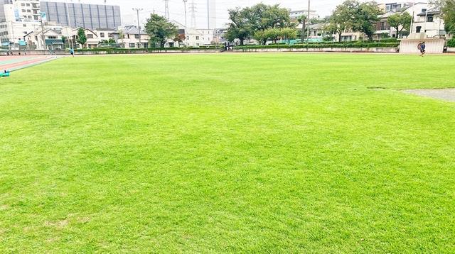 府中市民陸上競技場の芝生